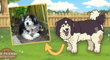 juego-old-friends-dog-game